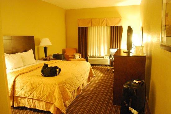 Comfort Inn : vista camera