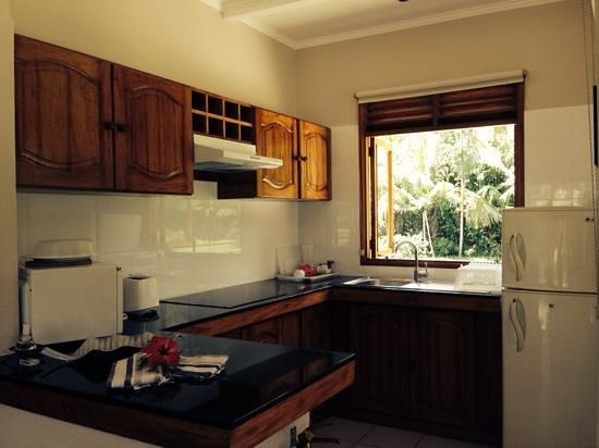 Les Villas d'Or : кухня с окнами в сад
