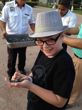 Occidental Nuevo Vallarta: My son holding a freshly hatched sea turtle
