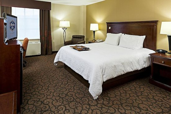 Hampton Inn Littleton: Modern Guest Room