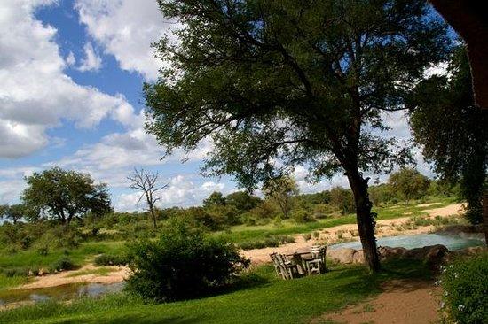 Motswari Private Game Reserve: view from veranda