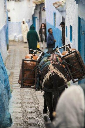 Casa Perleta: callejones de la medina
