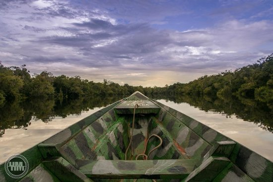 Amazon Tupana Lodge : Canoa motorizada
