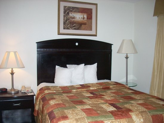 MainStay Suites Texas Medical Center/Reliant Park: Room
