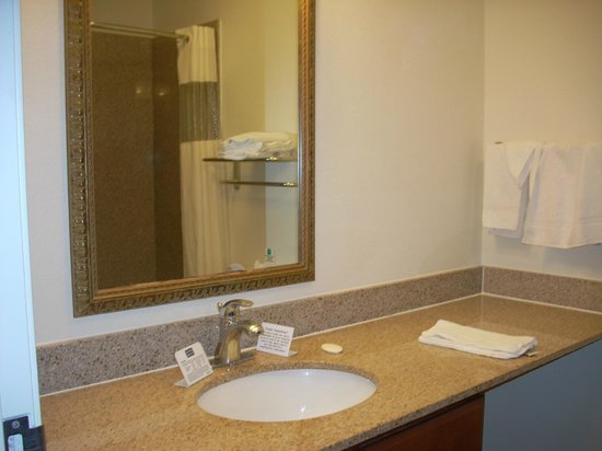MainStay Suites Texas Medical Center/Reliant Park: Bathroom