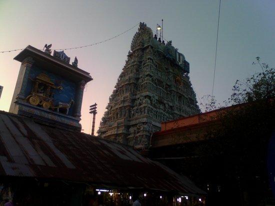 Sri Parthasarathy Temple : Tower view-Muralitharan photo