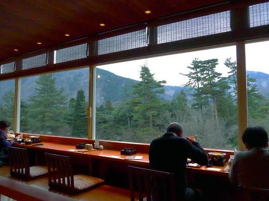 Hakone Hotel Kowakien: View from Japanese Restaurant