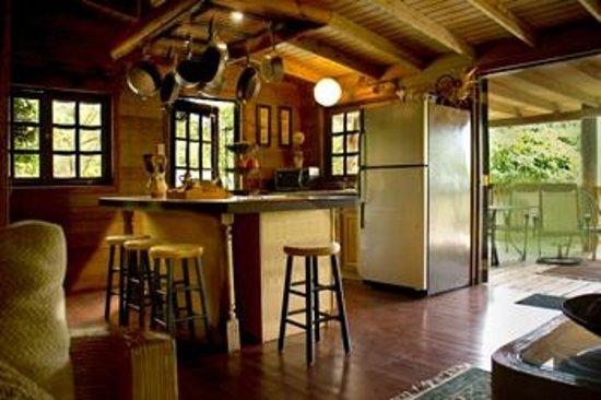 Arabian Farm Luxury Villas: Amazing well done kitchen and terrace.
