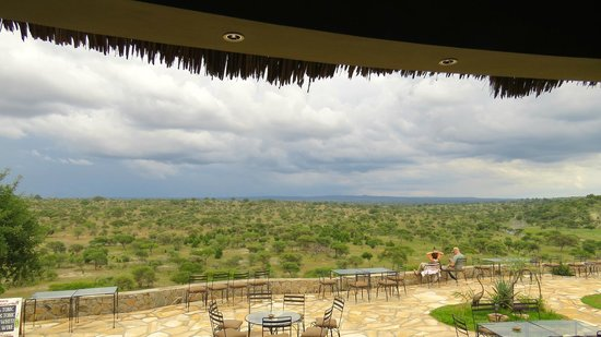 Tarangire Safari Lodge: View from the lounge
