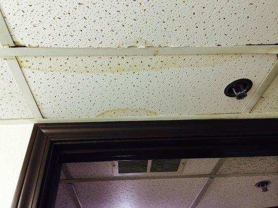 Motel 6 Pratt: stained ceiling
