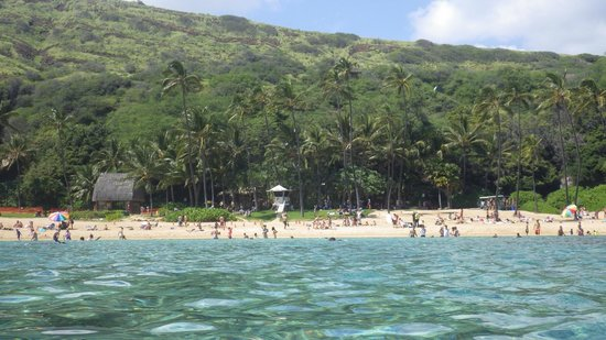 Hanauma Bay Nature Preserve: Looking back at the beach from the water
