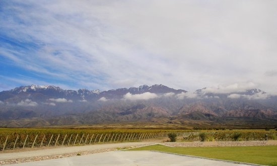 Malbec Wine Tours
