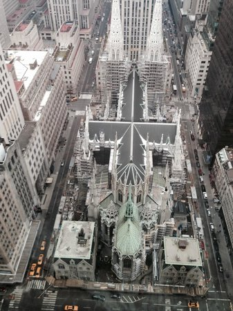 The Towers at Lotte New York Palace : The view