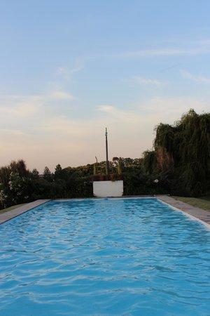 La Casa de los Limoneros: La piscina está rodeada de verde