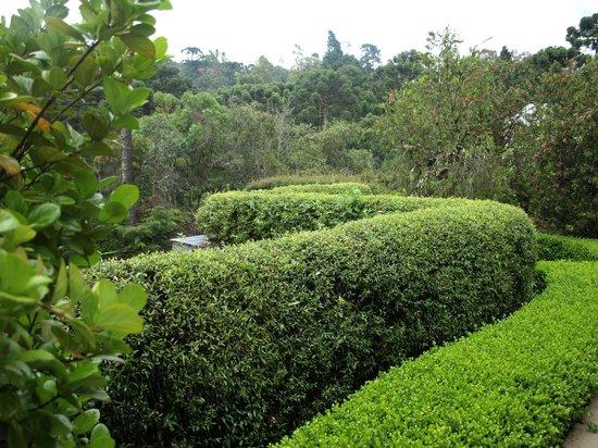 Grande Hotel Campos do Jordao: Muito cuidado com os jardins