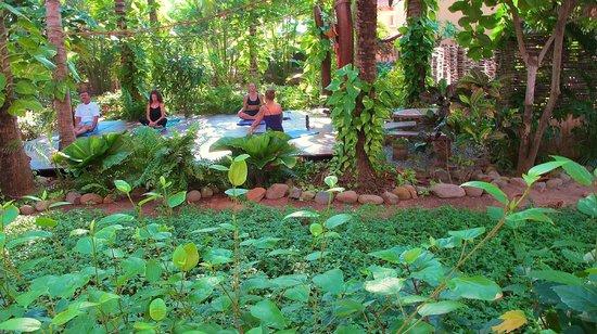 Casa de La Sirena : yoga platform