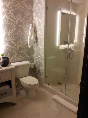 The Silversmith Hotel : shower, toilet