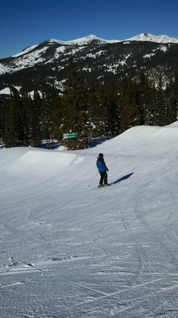 Copper Mountain : Wide Terrain and Trees