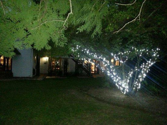 Fourways, Sudáfrica: Garden at night