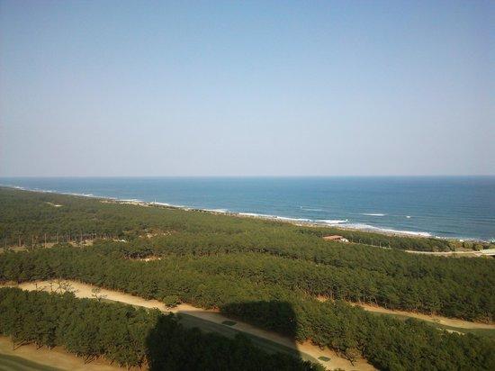 Sheraton Grande Ocean Resort: 天気良ければ最高!!
