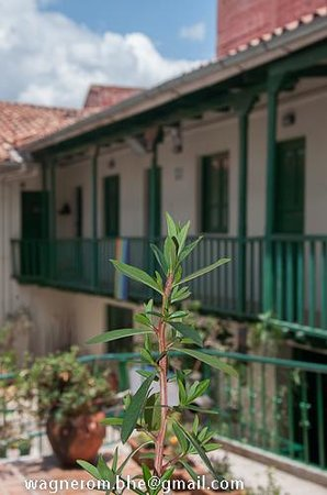 Museo de Plantas Sagradas, Magicas y Medicinales: A sede do museu