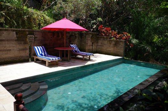 Ayung Resort Ubud : Srikandi pool