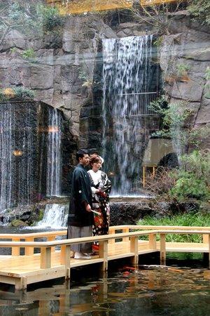 Hotel Gajoen Tokyo: The view of the Japanese garden from Cafe Lounge Pandora