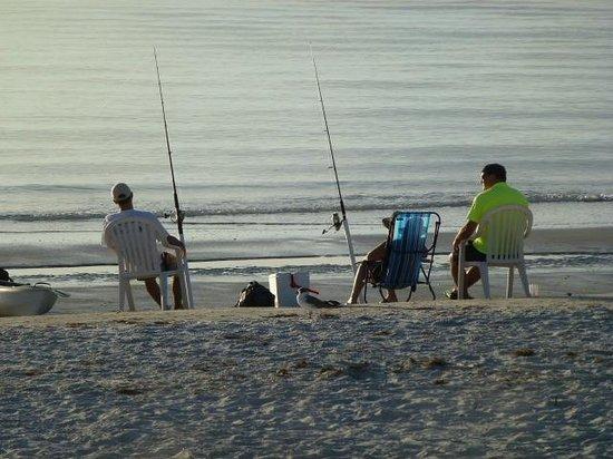 Fifty Gulfside Condominiums: Fishing nearby!