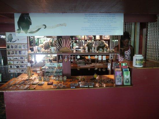 Fundación Jaguar Rescue Center: Der obligatorische Souvenierladen