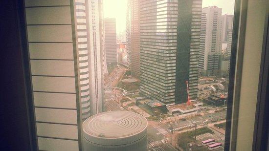 Hilton Tokyo: The view