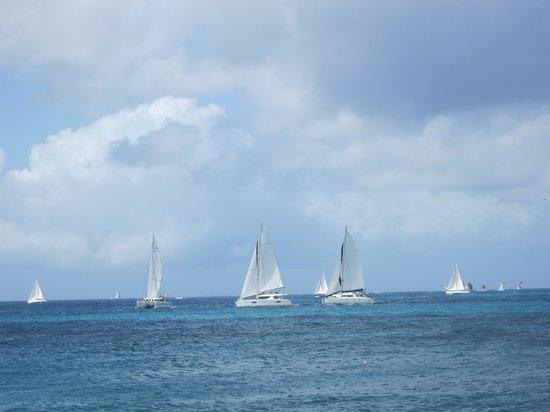 Simpson Bay Resort & Marina: Start of the Heineken Regatta