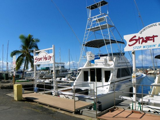 Lahaina Harbor: Fishing you sport?