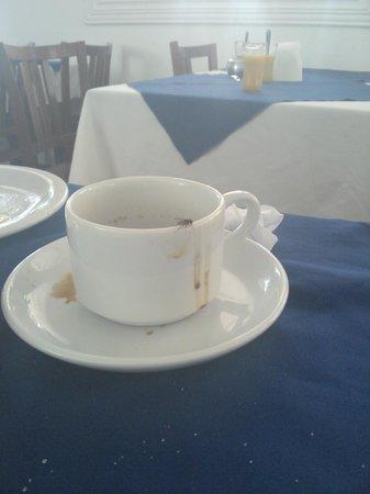 Resort Pau Brasil Praia: vigilancia sanitária deveria agir