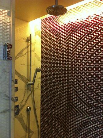 Renaissance Beijing Capital Hotel: nice shower