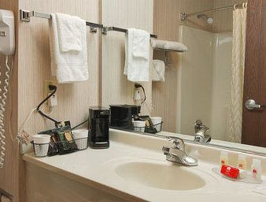 Ramada Bolingbrook : Bathroom