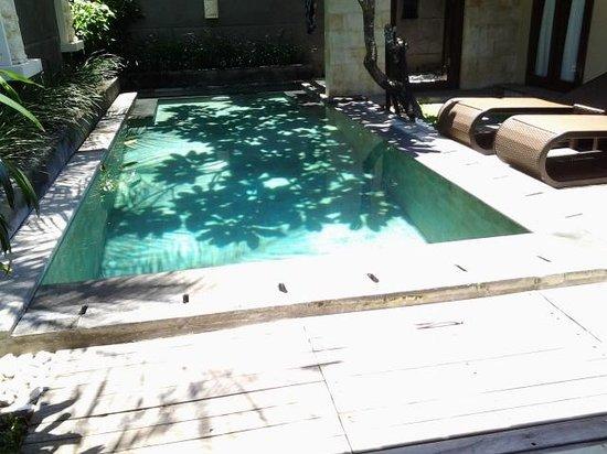 Nyuh Bali Villas: lovel shadd pool villa 8
