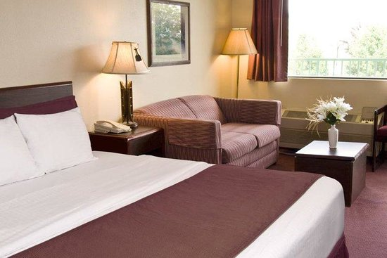 American Eagle Inn & Suites: Guest Room