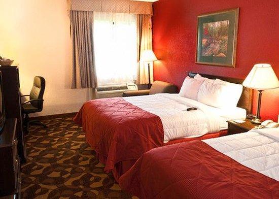 Econo Lodge Inn & Suites: Standard Double INClarion