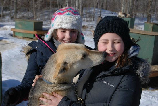 Muddy Paw Sled Dog Kennel - Day Tours: more kisses
