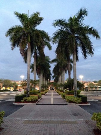 Mizner Place at Weston Town Center: To the market