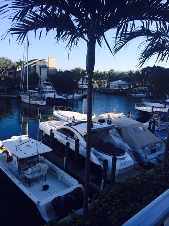 Hilton Fort Lauderdale Marina : View from our balcony