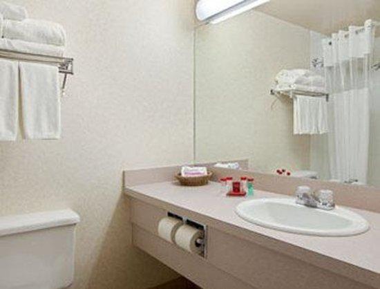 Ramada Lloydminster: Bathroom