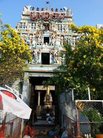 Kapaleeshwar Temple western Gopuram