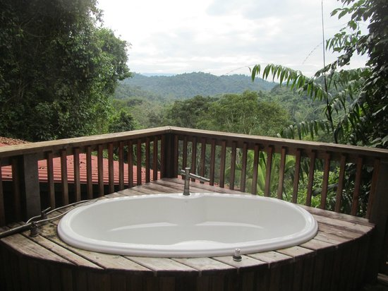 Ian Anderson's Caves Branch Jungle Lodge: View from Tree Tops Room