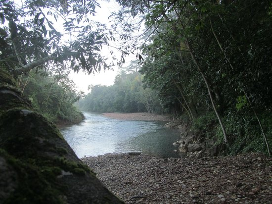 Ian Anderson's Caves Branch Jungle Lodge: Caves Branch River