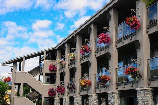 Accent Inn Victoria: Hanging Baskets