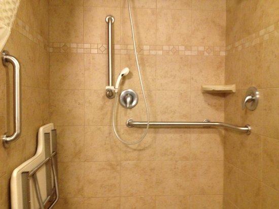 Hampton Inn Durango: accessible shower