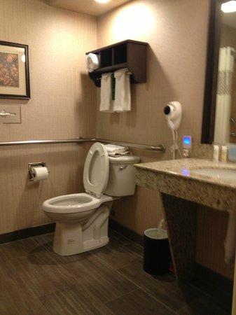 Hampton Inn Durango: accessible toilet