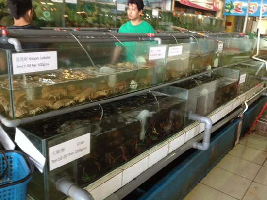 Hua Hing Seafood Restaurant : Fresh seafood in aquarium