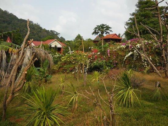 Spring Valley Resort : the pepper plantation